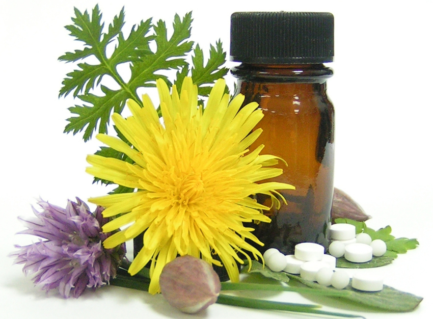 The Gentle Power of Homeopathy